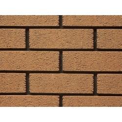 Ibstock Anglian Buff Multi Rustic 65mm Wirecut Extruded Buff Light Texture Clay Brick