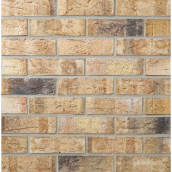 Crest Alaska Rustic Cintered 65mm Wirecut Extruded Buff Light Texture Clay Brick