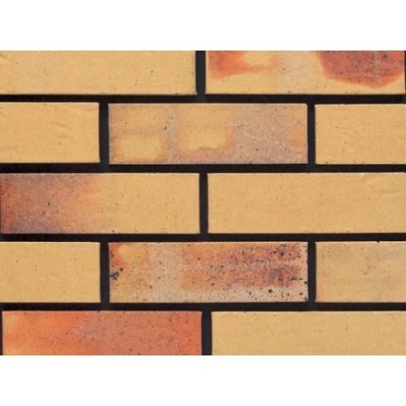 Ibstock Albany Cream Multi 65mm Wirecut Extruded Buff Light Texture Brick
