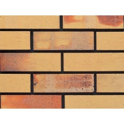 Ibstock Albany Cream Multi 73mm Wirecut Extruded Buff Light Texture Brick
